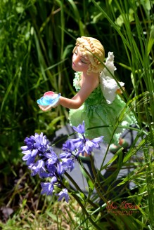 Felicity the Fairy workshop